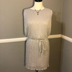 Enfocus Metallic Silver Dress